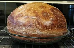 ALASKAN SOURDOUGH STARTER yeast can be used in bread machine